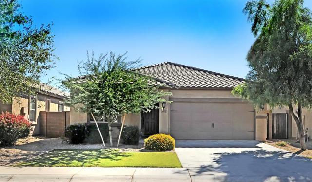 4107 E Alamo Street, San Tan Valley, AZ 85140 (MLS #5675210) :: The Bill and Cindy Flowers Team