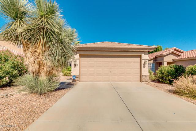 1094 E Poncho Lane, San Tan Valley, AZ 85143 (MLS #5675224) :: The Bill and Cindy Flowers Team
