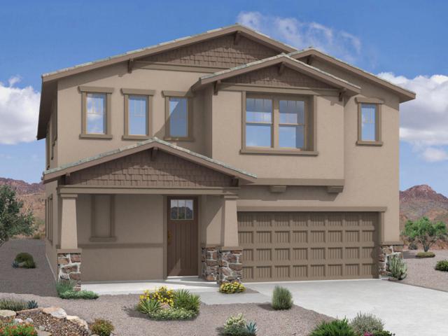 41545 W Anne Lane, Maricopa, AZ 85138 (MLS #5675341) :: Yost Realty Group at RE/MAX Casa Grande