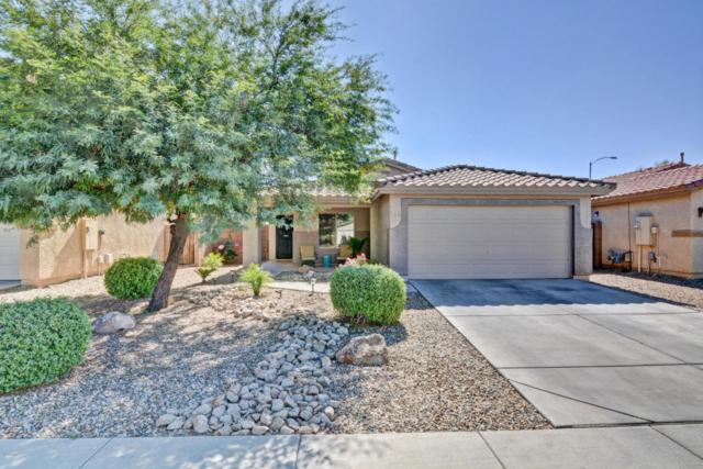 13121 W Fairmont Avenue, Litchfield Park, AZ 85340 (MLS #5675384) :: Group 46:10
