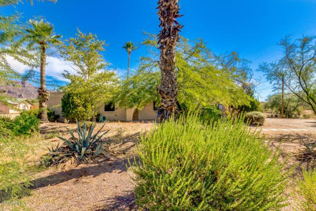 1375 S Mountain View Road, Apache Junction, AZ 85119 (MLS #5675399) :: Yost Realty Group at RE/MAX Casa Grande