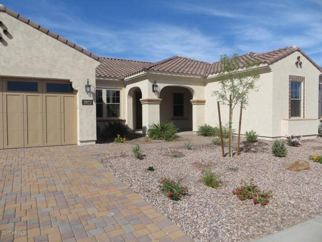 3922 S White Drive, Chandler, AZ 85286 (MLS #5675459) :: The Bill and Cindy Flowers Team