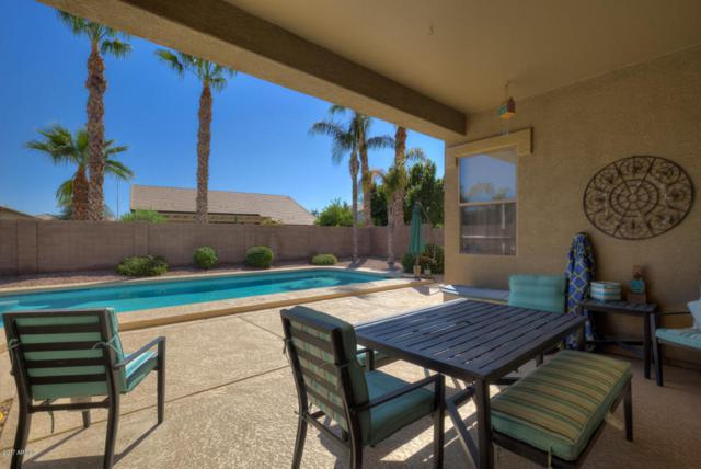 1771 E Wesson Drive, Chandler, AZ 85286 (MLS #5675464) :: The Bill and Cindy Flowers Team