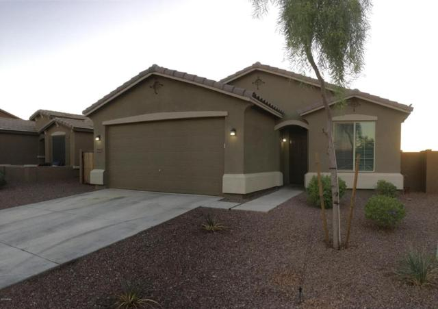 35480 N Happy Jack Drive, Queen Creek, AZ 85142 (MLS #5675466) :: The Bill and Cindy Flowers Team
