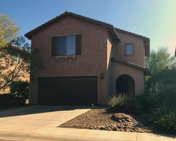 2941 N Daisy Drive, Florence, AZ 85132 (MLS #5675490) :: Yost Realty Group at RE/MAX Casa Grande