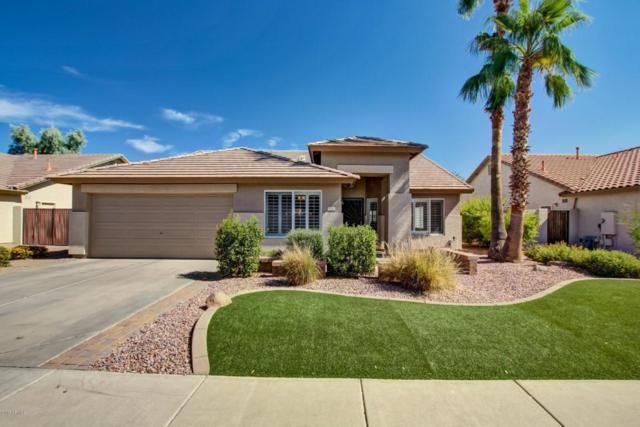 971 N Danyell Drive, Chandler, AZ 85225 (MLS #5675504) :: The Bill and Cindy Flowers Team