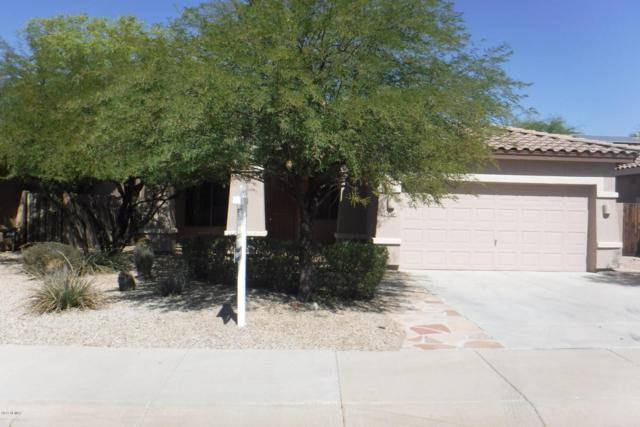 17528 W Desert View Lane, Goodyear, AZ 85338 (MLS #5675505) :: Rodney Barnes Real Estate