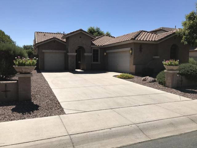 1271 E Nightingale Lane, Gilbert, AZ 85298 (MLS #5675516) :: The Bill and Cindy Flowers Team