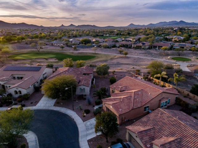 12538 W Oberlin Way, Peoria, AZ 85383 (MLS #5675518) :: The Worth Group