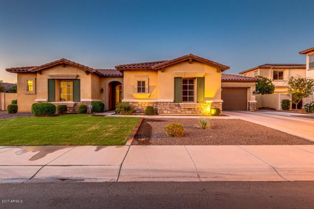14584 W Lajolla Drive, Litchfield Park, AZ 85340 (MLS #5675525) :: Group 46:10