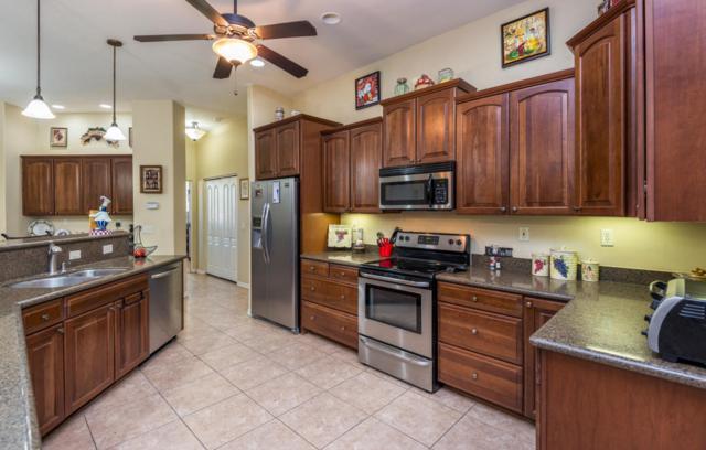4241 N Colt Road, Apache Junction, AZ 85119 (MLS #5675680) :: Yost Realty Group at RE/MAX Casa Grande