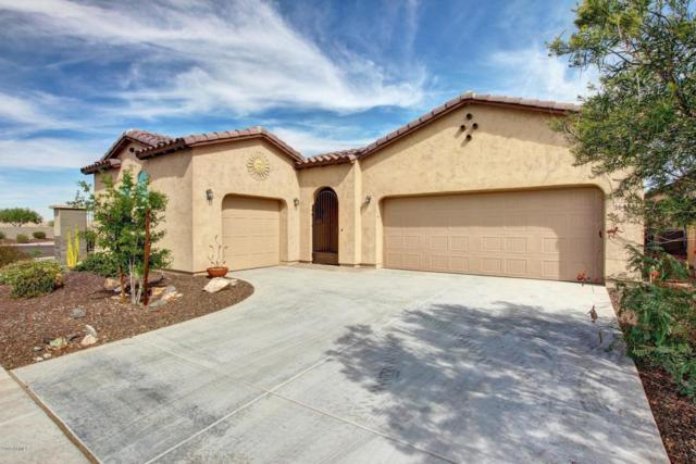 16451 S 176TH Lane, Goodyear, AZ 85338 (MLS #5675684) :: Rodney Barnes Real Estate