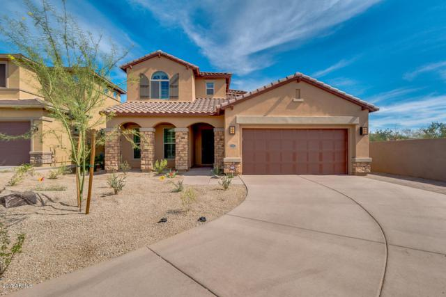 17023 N 98th Place, Scottsdale, AZ 85255 (MLS #5675820) :: The Everest Team at My Home Group
