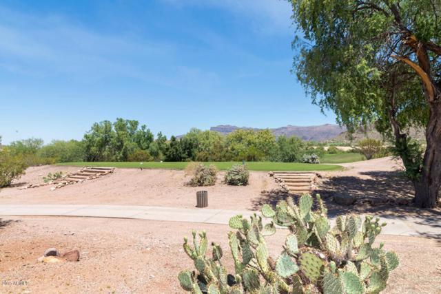 8842 E Greenview Drive, Gold Canyon, AZ 85118 (MLS #5675918) :: Yost Realty Group at RE/MAX Casa Grande