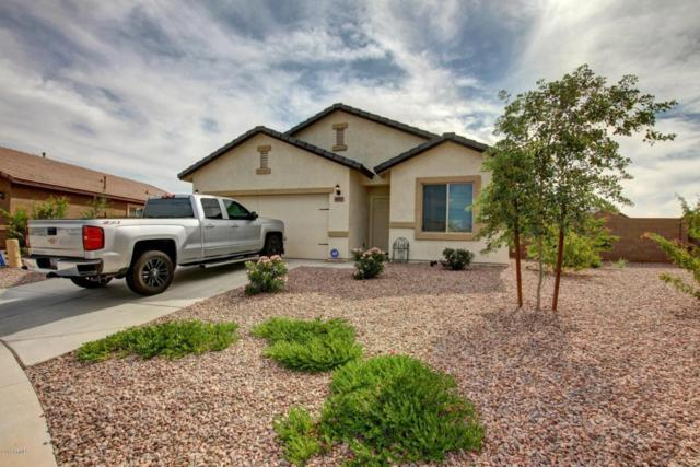 40171 W Pryor Lane, Maricopa, AZ 85138 (MLS #5675919) :: Yost Realty Group at RE/MAX Casa Grande