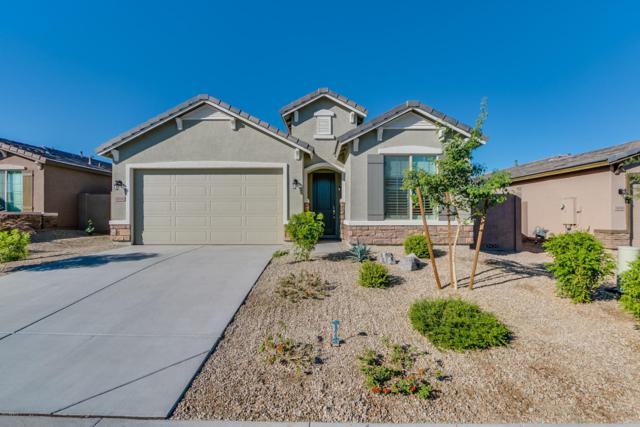 11036 S 175TH Lane, Goodyear, AZ 85338 (MLS #5676184) :: Essential Properties, Inc.