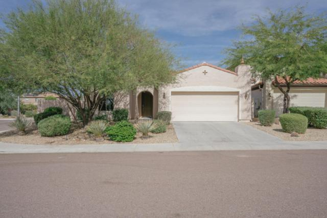 5532 W Cavedale Drive, Phoenix, AZ 85083 (MLS #5676201) :: The Laughton Team
