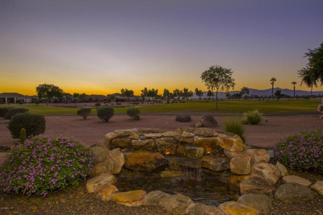 2642 N 164TH Avenue, Goodyear, AZ 85395 (MLS #5676232) :: Kortright Group - West USA Realty