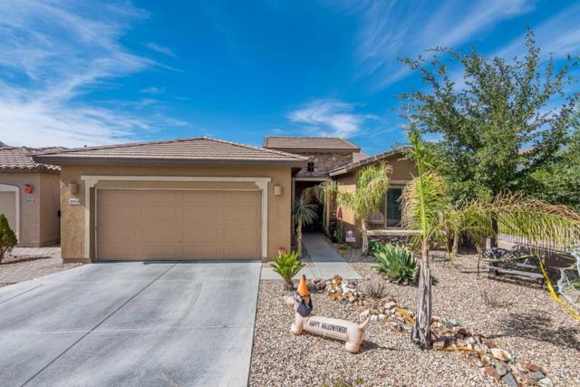 26928 N 55TH Drive, Phoenix, AZ 85083 (MLS #5676235) :: The Laughton Team