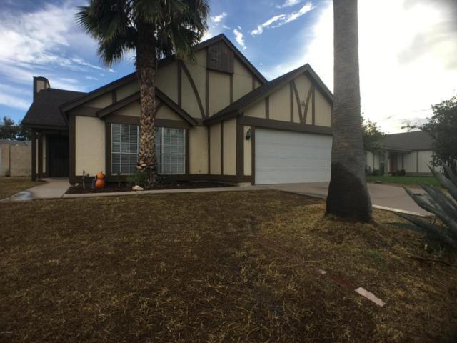 691 E Stottler Place, Chandler, AZ 85225 (MLS #5676241) :: Group 46:10