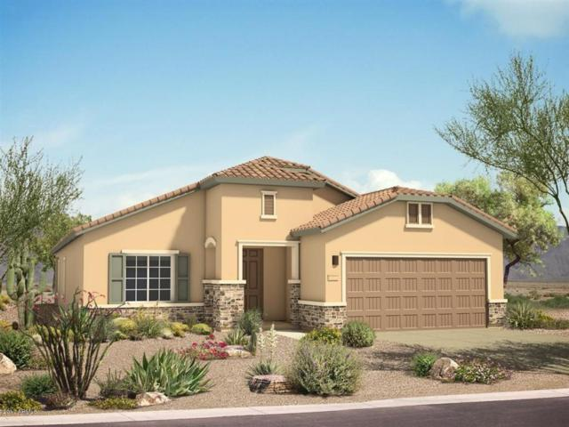 17454 W Gambit Trail, Surprise, AZ 85387 (MLS #5676312) :: Kortright Group - West USA Realty