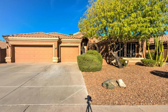 304 S Ironwood Street, Gilbert, AZ 85296 (MLS #5676329) :: Yost Realty Group at RE/MAX Casa Grande