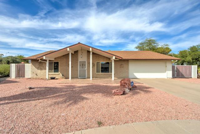 4816 E Navajo Circle, Phoenix, AZ 85044 (MLS #5676333) :: Jablonski Real Estate Group
