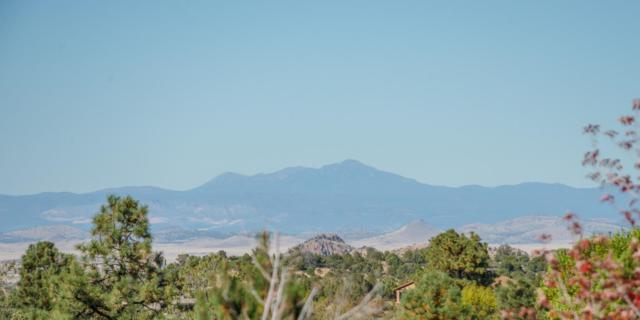 581 Donny Brook Circle, Prescott, AZ 86303 (MLS #5676355) :: Occasio Realty
