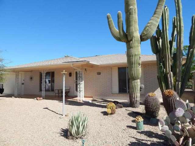 10308 W Charter Oak Drive, Sun City, AZ 85351 (MLS #5676357) :: Rodney Barnes Real Estate
