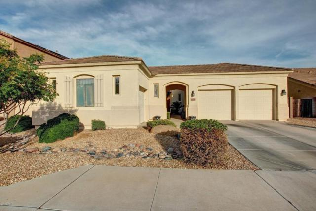 4529 N 129TH Drive, Litchfield Park, AZ 85340 (MLS #5676374) :: Group 46:10