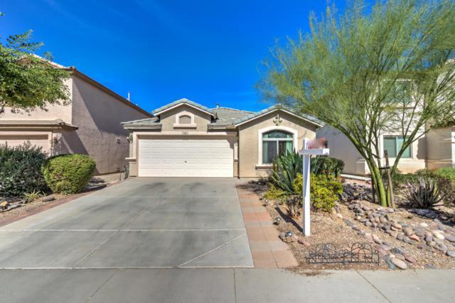 418 E Penny Lane, San Tan Valley, AZ 85140 (MLS #5676381) :: Group 46:10
