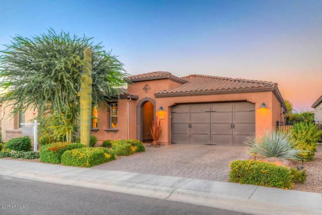 1546 E Sweet Citrus Drive, San Tan Valley, AZ 85140 (MLS #5676507) :: Group 46:10
