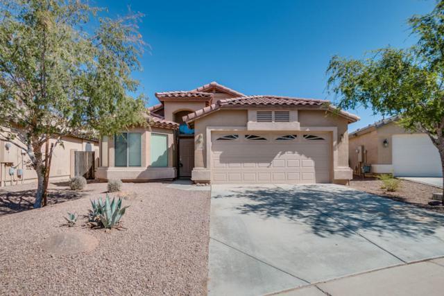 21285 N Falcon Lane, Maricopa, AZ 85138 (MLS #5676524) :: Group 46:10