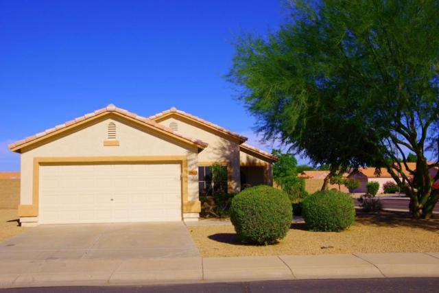 17603 N Wavyleaf Circle, Surprise, AZ 85374 (MLS #5676528) :: Rodney Barnes Real Estate
