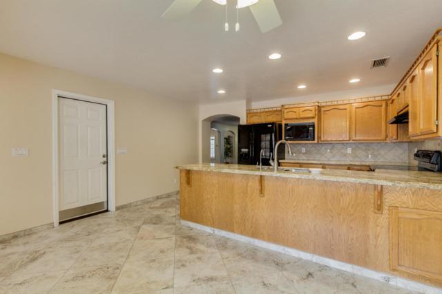 501 E Meadows Lane, Gilbert, AZ 85234 (MLS #5676550) :: Revelation Real Estate