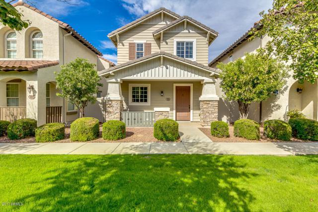 3893 E Gideon Way, Gilbert, AZ 85296 (MLS #5676569) :: Revelation Real Estate
