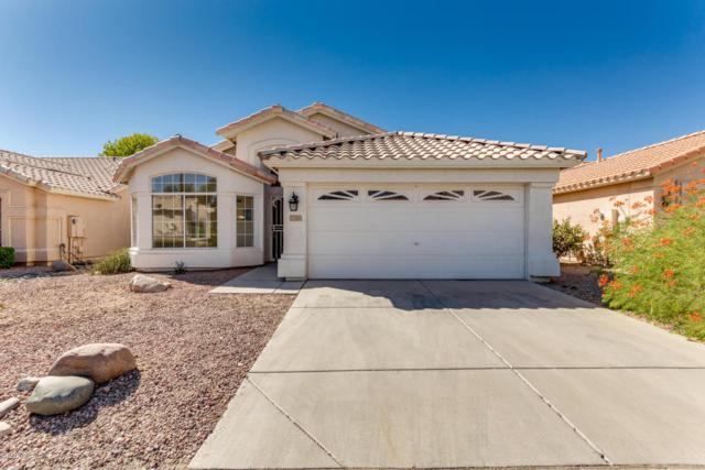 11556 W Badger Court, Surprise, AZ 85378 (MLS #5676570) :: Kortright Group - West USA Realty