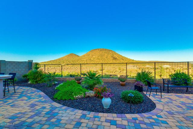 32343 N 129TH Drive, Peoria, AZ 85383 (MLS #5676601) :: Rodney Barnes Real Estate