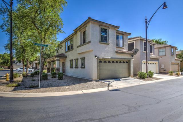 1531 S Longspur Lane, Gilbert, AZ 85296 (MLS #5676629) :: Revelation Real Estate