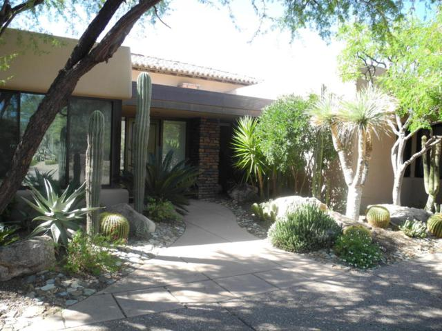 10346 E Nolina Trail, Scottsdale, AZ 85262 (MLS #5676635) :: Group 46:10