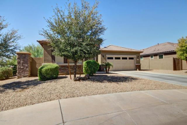 1656 N 161ST Lane, Goodyear, AZ 85395 (MLS #5676655) :: Kortright Group - West USA Realty