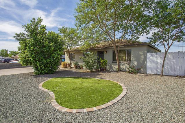 10238 N 17TH Drive, Phoenix, AZ 85021 (MLS #5676660) :: Revelation Real Estate