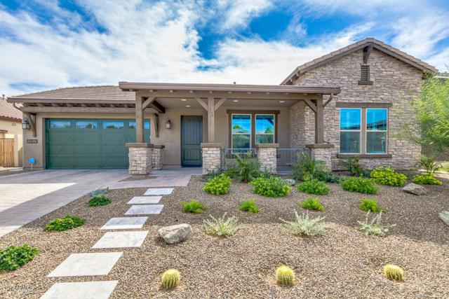 2921 E Sunrise Place, Chandler, AZ 85286 (MLS #5676665) :: Revelation Real Estate