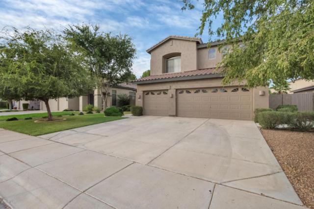 1634 E Park Avenue, Gilbert, AZ 85234 (MLS #5676673) :: Revelation Real Estate