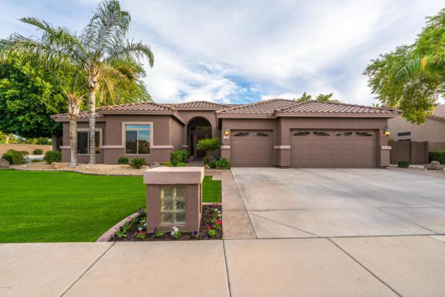 585 E Constitution Drive, Gilbert, AZ 85296 (MLS #5676685) :: Revelation Real Estate