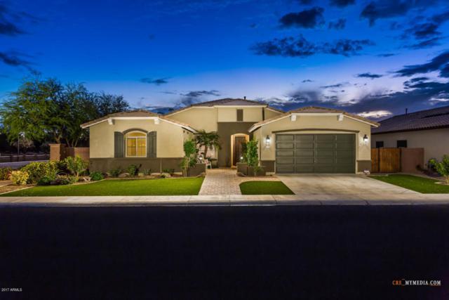 41352 N Bracewell Street, San Tan Valley, AZ 85140 (MLS #5676710) :: Kelly Cook Real Estate Group