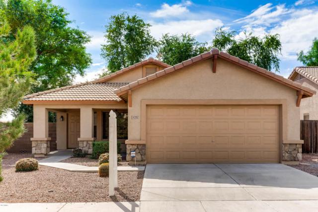17257 W Meghan Drive, Goodyear, AZ 85338 (MLS #5676711) :: Kortright Group - West USA Realty