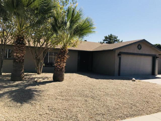 14025 N 52ND Avenue, Glendale, AZ 85306 (MLS #5676718) :: Kortright Group - West USA Realty