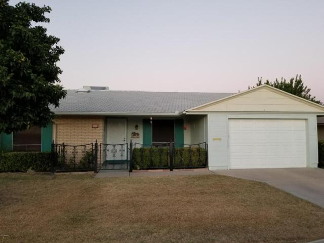 10610 W El Capitan Circle, Sun City, AZ 85351 (MLS #5676757) :: Kortright Group - West USA Realty