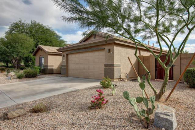 17567 W Desert Sage Drive, Goodyear, AZ 85338 (MLS #5676768) :: Kortright Group - West USA Realty